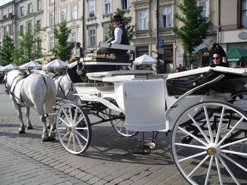 DP horse and carriage