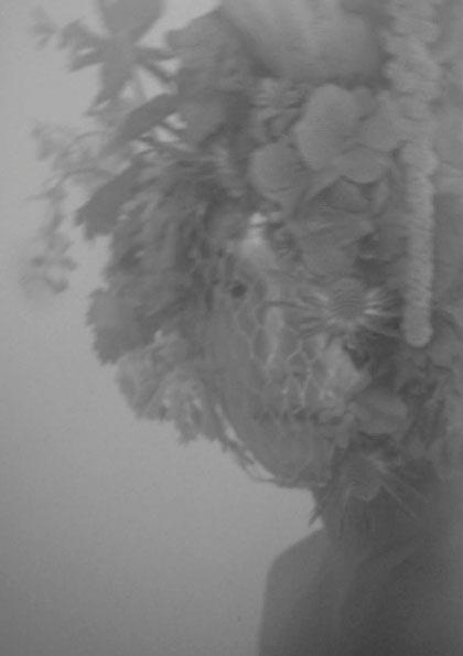 Richard-nicoll-(film)1