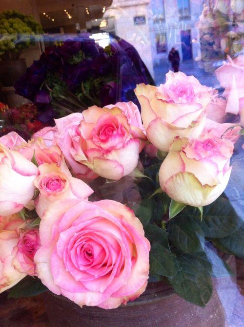 Flowers from Marco de RIvera