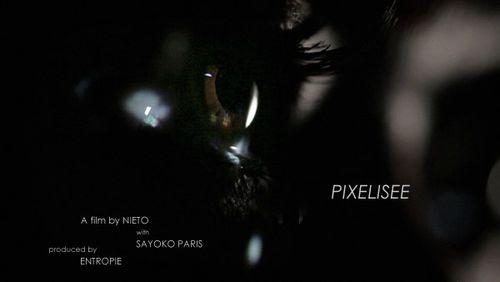 Pixelisee_01b_w