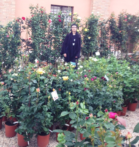 Floracult 2013 65