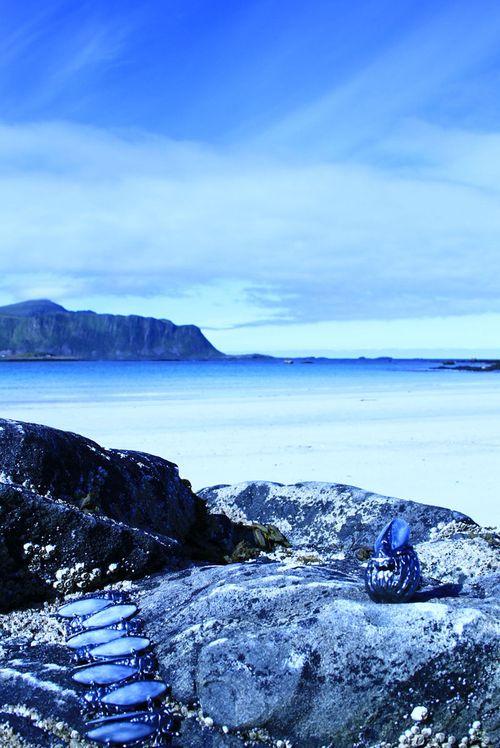 Lethargy images lofoten islands