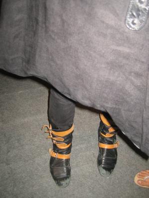 Robinshoes