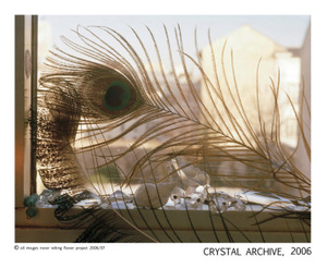 Nwfp_crystalarchive_final