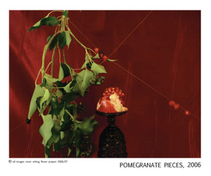 Nwfp_pomegranate_final