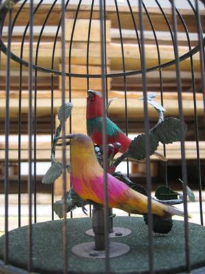 Birdsincage