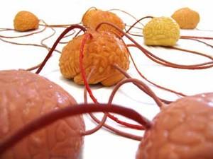 Brains3