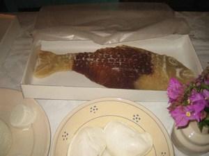 Cloisterednunsfish