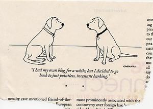 Dogblog013