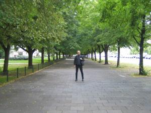 Robbintrees_2
